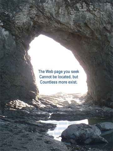 The Web page you seek cannot be located, but countless more exist.